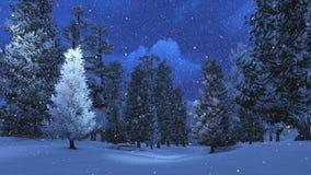 Sneeuwpijnboombos bij sneeuwvalnacht stock afbeeldingen