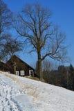 Sneeuwplattelandshuisje in de bergen Stock Fotografie