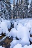 Sneeuwrivier Stock Fotografie