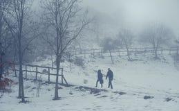 Sneeuwscène een de winter` s dag Stock Afbeelding