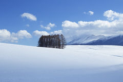 Sneeuwscène in Japan Royalty-vrije Stock Afbeelding