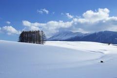 Sneeuwscène in Japan Stock Foto's
