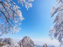 Sneeuwscène op huangshan berg Royalty-vrije Stock Afbeeldingen