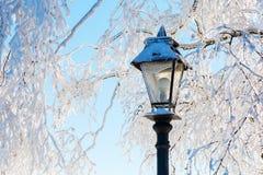 Sneeuwscène van een straatlantaarn en bomen Stock Afbeeldingen