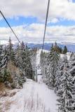 Sneeuwscène van Karpatische Bergen, Roemenië Panoramische vertic Stock Fotografie