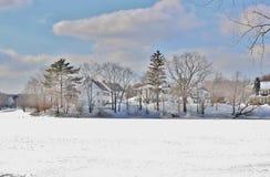 Sneeuwscènes Stock Afbeeldingen
