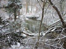 Sneeuwscape Stock Afbeeldingen