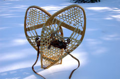 Sneeuwschoen op sneeuw Royalty-vrije Stock Fotografie