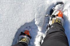 Sneeuwschoenen Royalty-vrije Stock Fotografie
