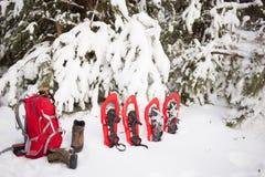 Sneeuwschoenen en een rugzak die zich dichtbij spar bevinden Stock Fotografie
