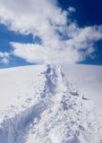 Sneeuwschoensleep Royalty-vrije Stock Fotografie