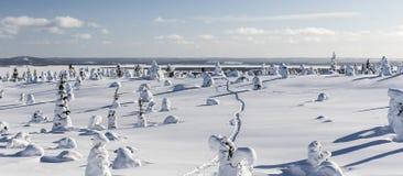 Sneeuwschoenweg Royalty-vrije Stock Fotografie
