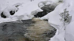 Sneeuwsmeltingen die tot smalle waterstroom leiden die kreek tegenkomen stock footage