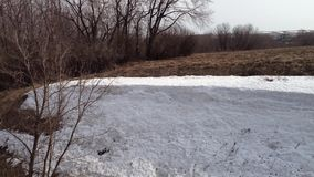Sneeuwsneeuwbank in het de winterbos stock footage