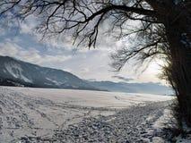 Sneeuwsporen royalty-vrije stock fotografie