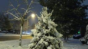 Sneeuwstadspark gezien lantaarns bij avond Snow-covered bomen en banken, voetpad in een fabelachtige de winternacht stock video