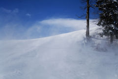 Sneeuwstorm Royalty-vrije Stock Foto