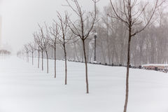 Sneeuwstorm in de stad Royalty-vrije Stock Afbeeldingen