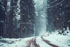Sneeuwstraat in het Zwarte Bos in Duitsland royalty-vrije stock afbeelding
