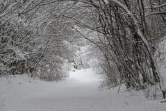 Sneeuwtunnel stock afbeelding