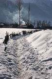 Sneeuwval in Bergen Stock Fotografie