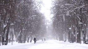 Sneeuwval in de stad, mensen die op sneeuwweg lopen Blizzard, sneeuwstorm stock video