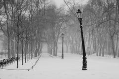 Sneeuwval en oude lantaarn Stock Foto's