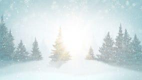 Sneeuwval en sparren met rijp en sneeuw in avondbos wordt behandeld in de winter die Van een lus voorzien grafische motie stock videobeelden