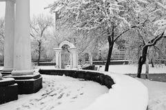 Sneeuwval in het park Royalty-vrije Stock Fotografie