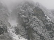Sneeuwval Himalayagebergte Stock Foto's