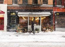 Sneeuwval in NYC Stock Afbeelding