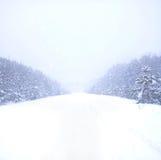 Sneeuwval op de manier Royalty-vrije Stock Fotografie
