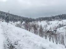 Sneeuwvallei Stock Foto's