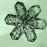 Sneeuwvlok Royalty-vrije Stock Afbeeldingen