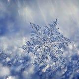 Sneeuwvlok Crystal Fantasy Royalty-vrije Stock Foto