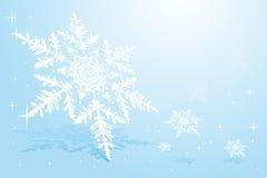 Sneeuwvlok op sneeuw Royalty-vrije Stock Fotografie