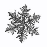 Sneeuwvlok op witte achtergrond vector illustratie