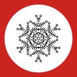 Sneeuwvlokembleem Geplaatste Cororknopen Royalty-vrije Stock Foto