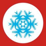 Sneeuwvlokembleem Geplaatste Cororknopen Royalty-vrije Stock Afbeelding
