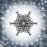 Sneeuwvlokembleem Geplaatste Cororknopen Stock Fotografie