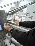 Sneeuwvlokken die op handen en jasje vallen royalty-vrije stock afbeelding