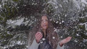 Sneeuwvlokken die op Mooi Meisjes` s Gezicht en lang haar in Langzame Motie vallen Portret van jonge mooie vrouw over sneeuw stock footage