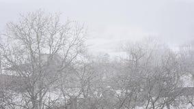 Sneeuwvlokken die tijdens een de Winteronweer vallen stock video