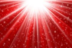 Sneeuwvlokken op een rood licht Royalty-vrije Stock Fotografie