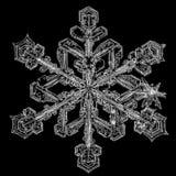 Sneeuwvlokken op zwarte achtergrond stock foto