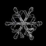 Sneeuwvlokken op zwarte achtergrond royalty-vrije stock afbeelding