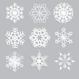 Sneeuwvlokken voor ontwerpkunstwerk Fijn de winterornament Sneeuwvlokinzameling Royalty-vrije Stock Afbeelding