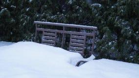 Sneeuwvlokkendaling over een metaalbank in het park Langzame Motie stock footage