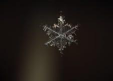 Sneeuwvlokmacro in de lucht Royalty-vrije Stock Afbeelding