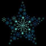 Sneeuwvlokster. Vector Illustratie